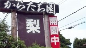 からたち園|茨城県の栗拾いが出来るおすすめのスポット