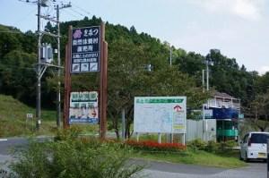 清和観光農園組合|千葉県でおすすめの栗拾いスポット