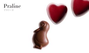 プラリーヌ ピエールマルコリーニのチョコの種類