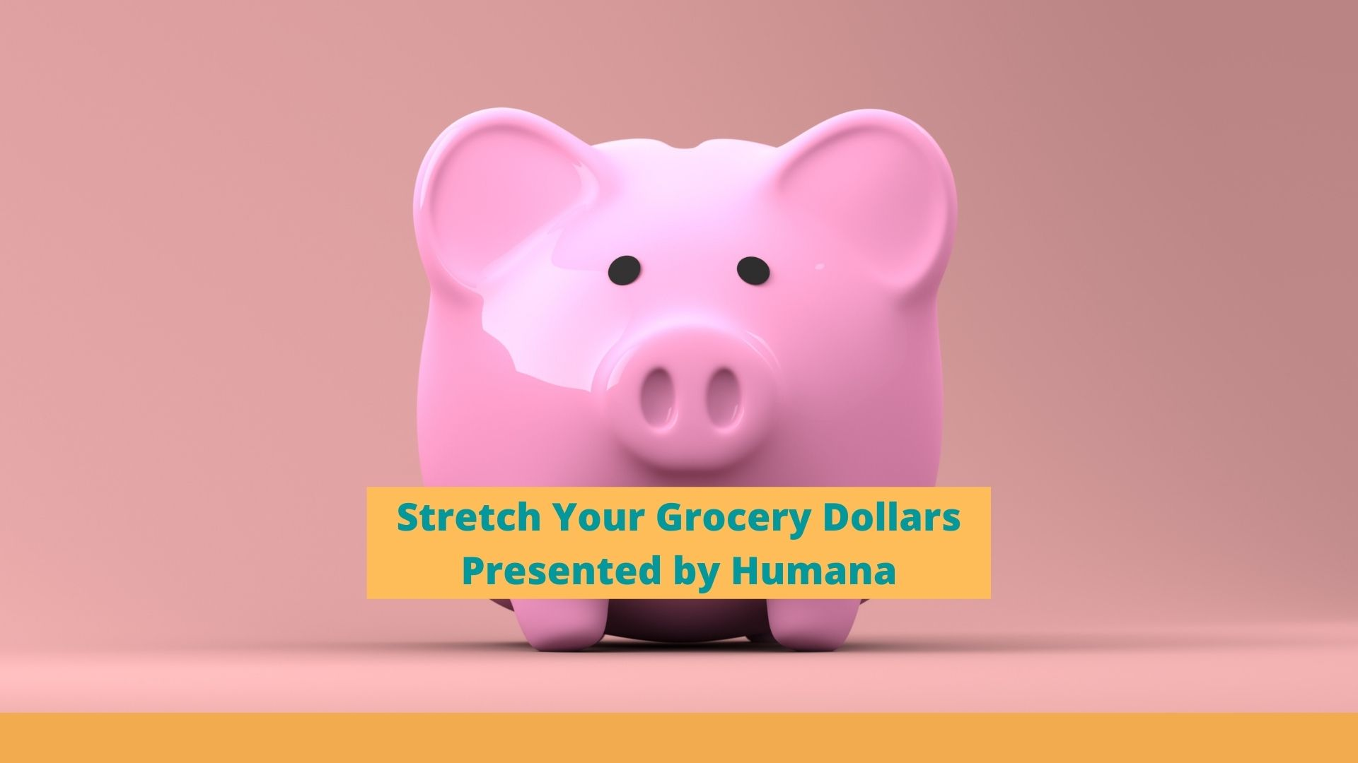 Stretch Your Grocery Dollars Program