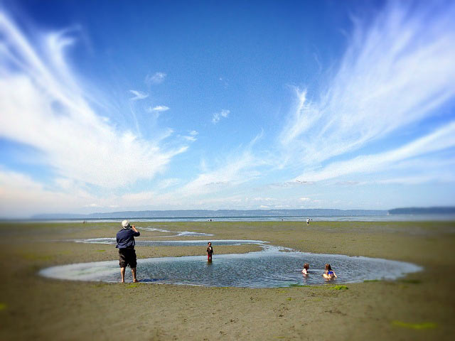 DAY TRIP Escape to Jetty Island near Everett  Northwest