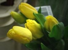 Yellow (Canadian)