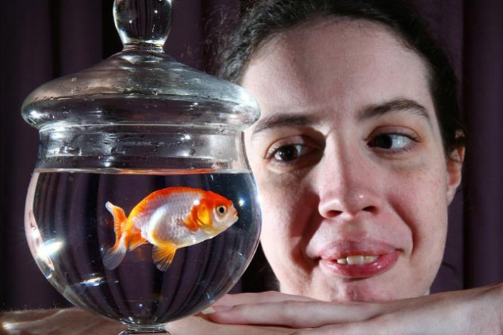 Brisbane woman pays $500 to save her $12 goldfish