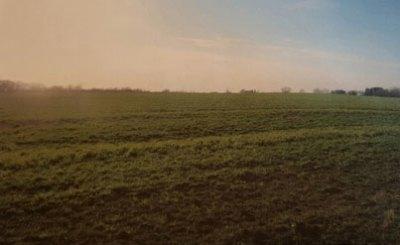 janas-farms-1