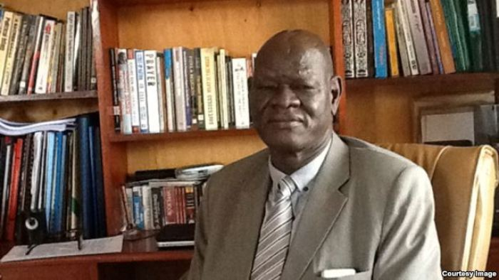 Dr. Peter Adwok Nyaba, former Minister of High Education, and a Senior member of SPLM/A-IO(Photo: file)