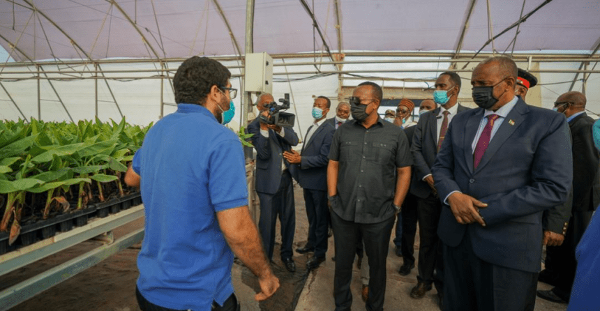 Sudan's Gen. Abdel Fattah al-Burhan and Ethiopia Primer Minister visiting Joytech Seedlings Nursery, a Hi-tech propagation facility in the country's Bishoftu (Debre Zeit), Shewa, Ethiopia on November 1, 2020(Photo credit: Courtesy image/Nyamilepedia)