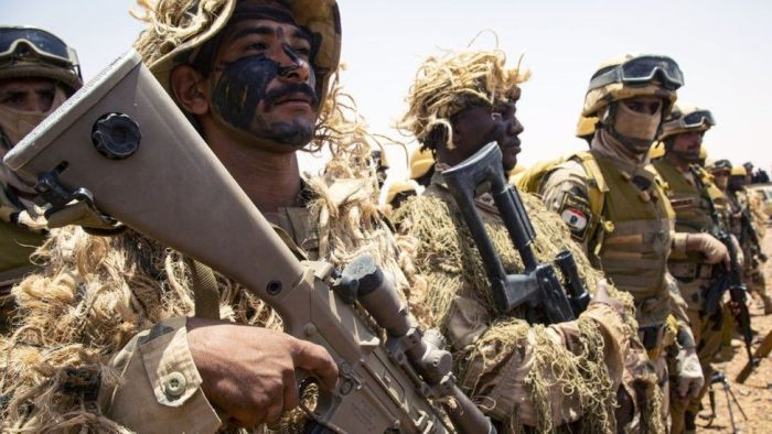 East African countries back Egypt as Cairo prepares for war with Ethiopia