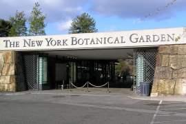Jardin botanique de New York