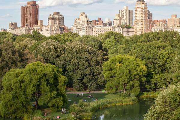 Central Park Views Official Guide York City
