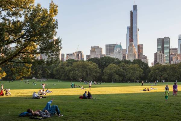 Central Park Official Guide York City