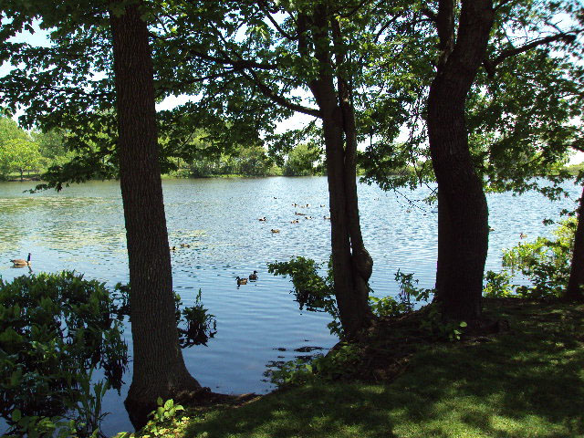 Wolfes Pond Park  NYC Parks