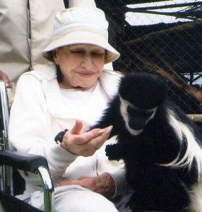Joyce Matz with a black-and-white Colobus monkey in an African preserve.