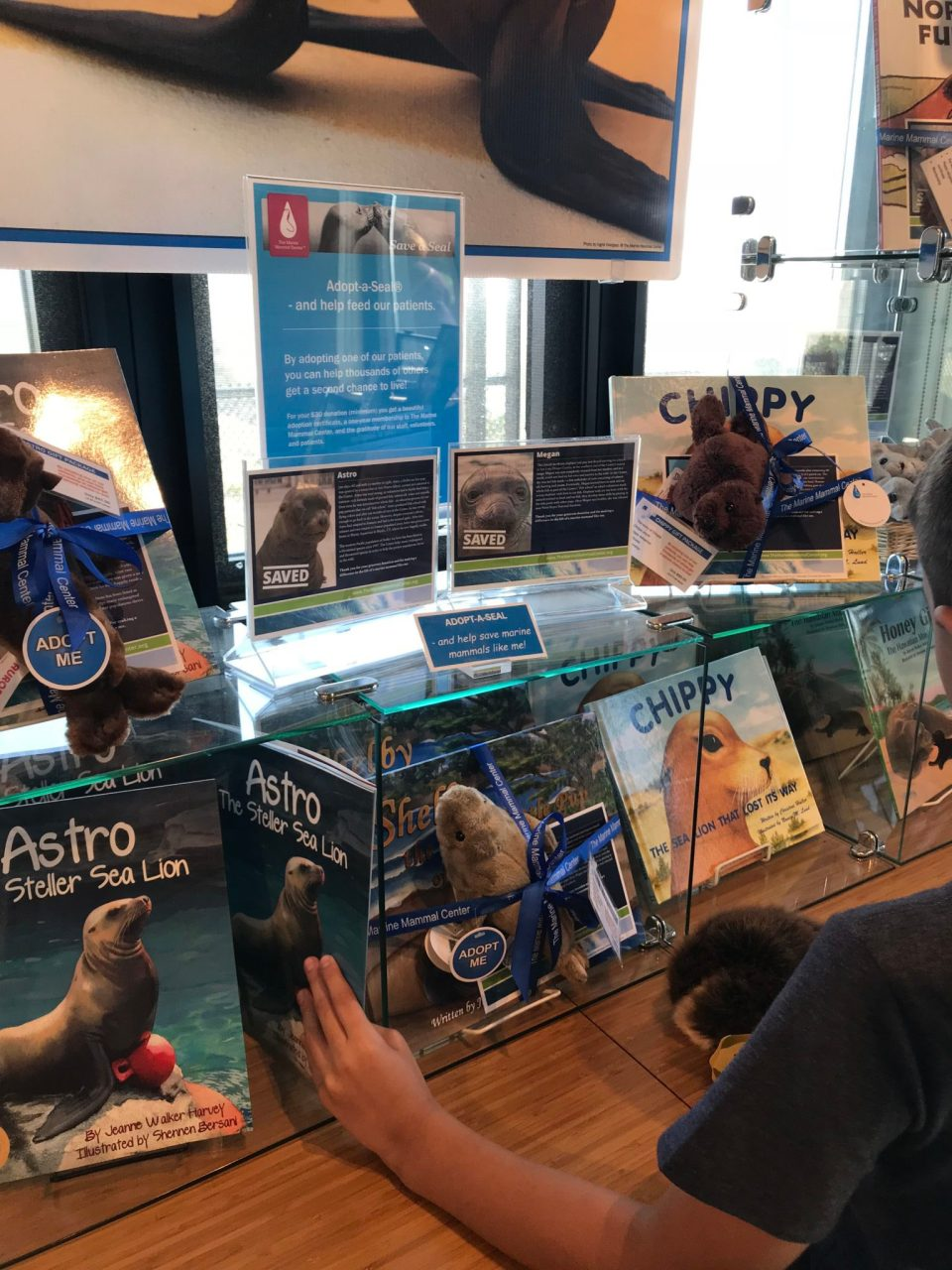 Our visit to the Marine Mammal Center