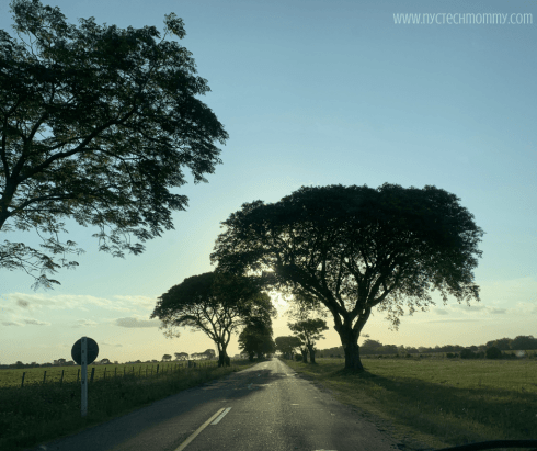 Uruguay with kids - take a road trip through the countryside - Reasons why Uruguay needs to be on your travel bucket list