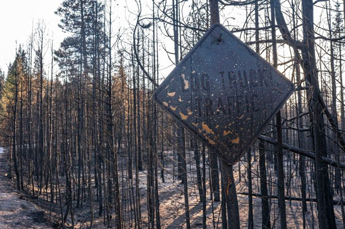 A fire-damaged sign hangs near trees burned by the Bootleg Fire on Wednesday, July 21, 2021, in Bly, Ore.