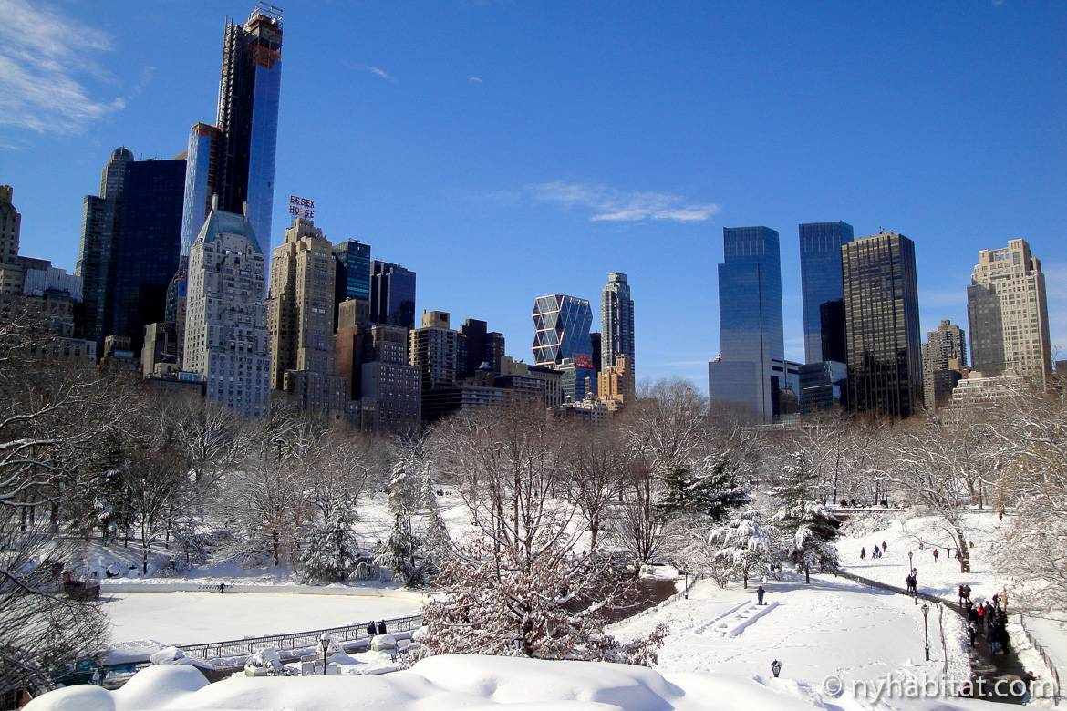 Top 10 Things To Do With Kids During Winter In New York New York Habitat Blog