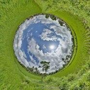 Planet Bali