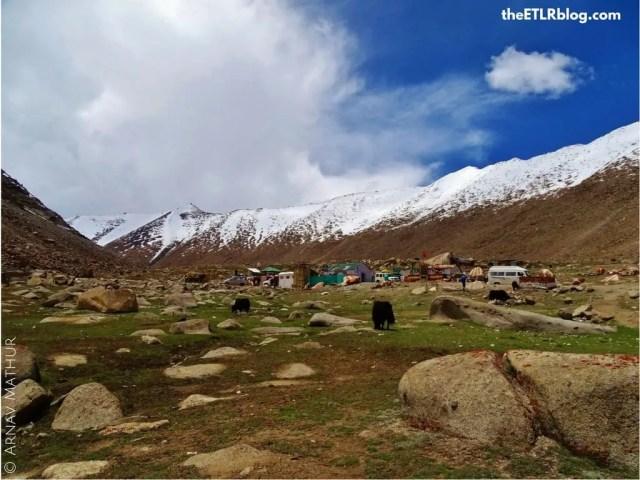 017 - ladakh road trip