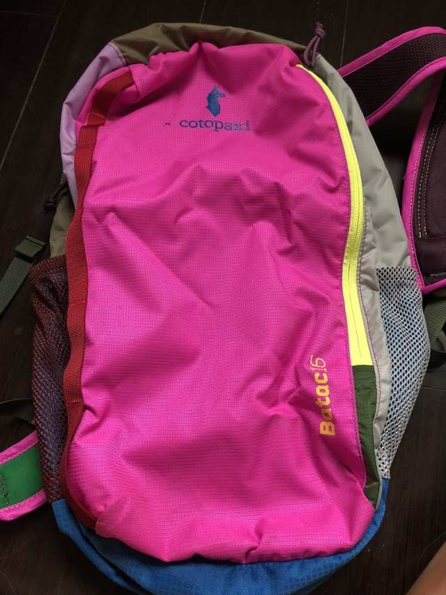 best carry on daypack for international travel for women - front