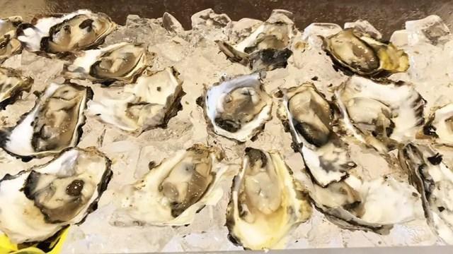 Luxe Sunset Boulevard Hotel - Easter Brunch Buffet - Oysters