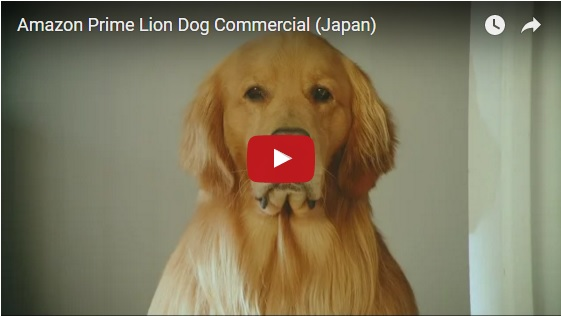 This Amazon Japan Dog-Lion Ad Should Win An Award!