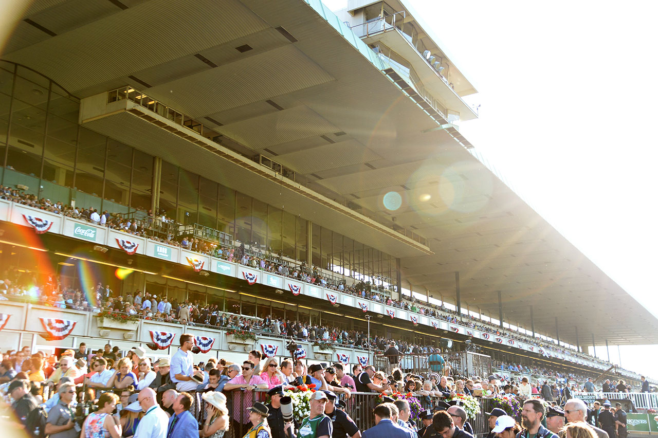 hight resolution of belmont park by the numbers