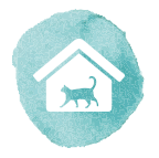 Cat Care Service NYC