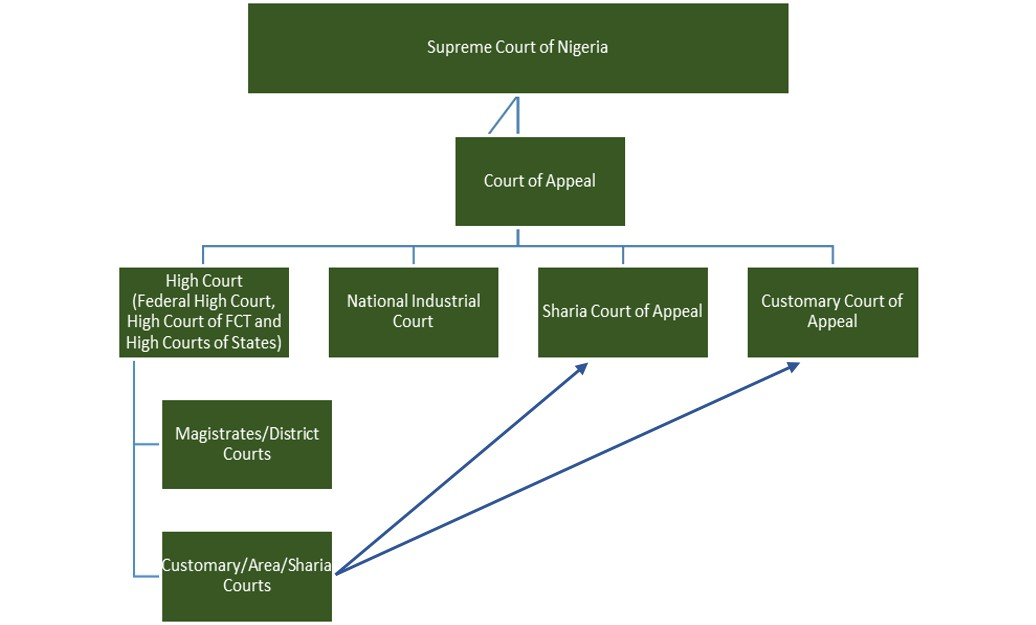 judicial branch court system diagram how to prune a fig tree update guide nigerian legal information globalex