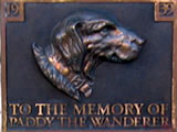 Death of Paddy the Wanderer