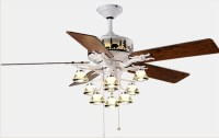 Living room decorative ceiling fan lights  NZQO