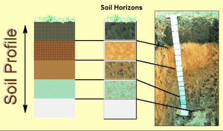 horizon diagram soil formation honda xrm cdi wiring features sequence and horizons