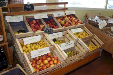 fruitslegumes3