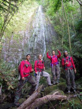 Ko'olau Mountains miconia surveys take us to some beautiful spots.