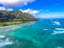 #8 - North Shore And Circle Island Tour Oahu Nature Tours