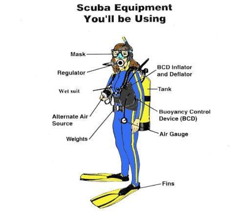 scuba gear diagram thermo fan wiring rental on oahu - island divers hawaii