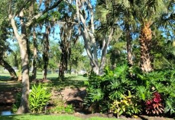 A Golf Course View