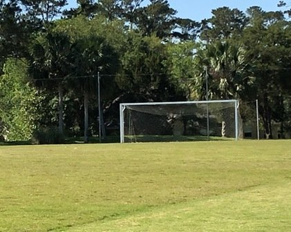 Soccer Field and Goal