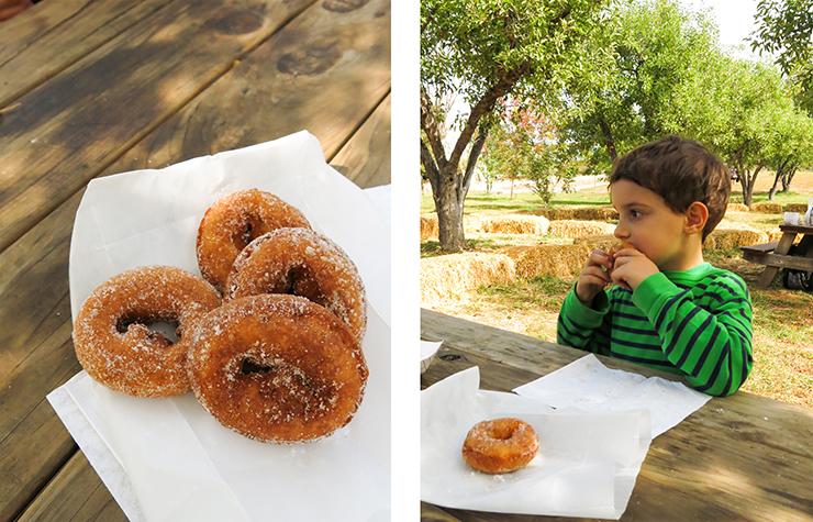 Alex Donuts