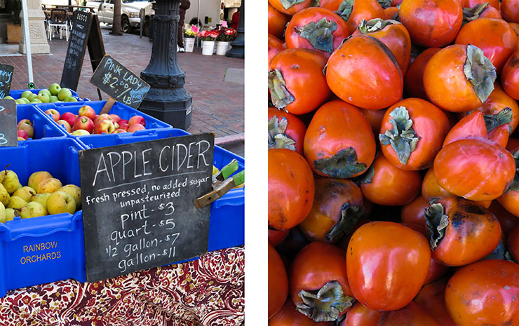 Apple Cider and Persimmons
