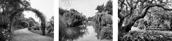 Oakvale gardens_3up
