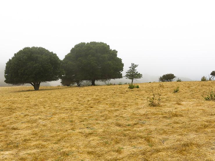 Knowland 2