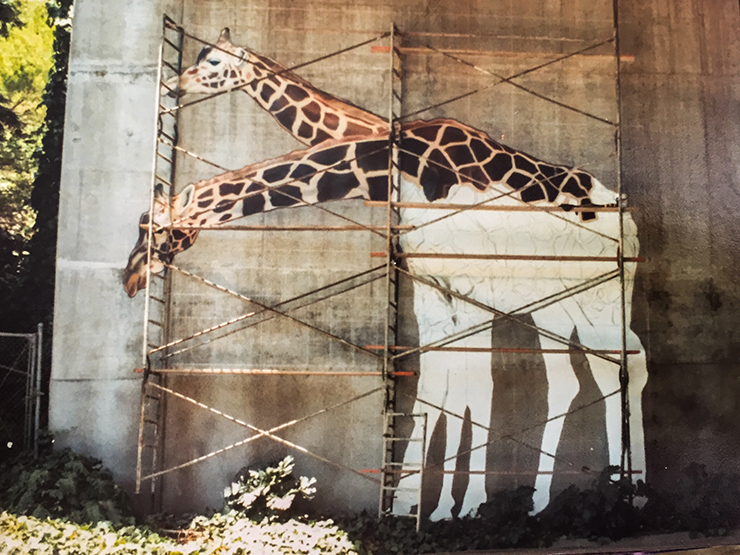 giraffe-4