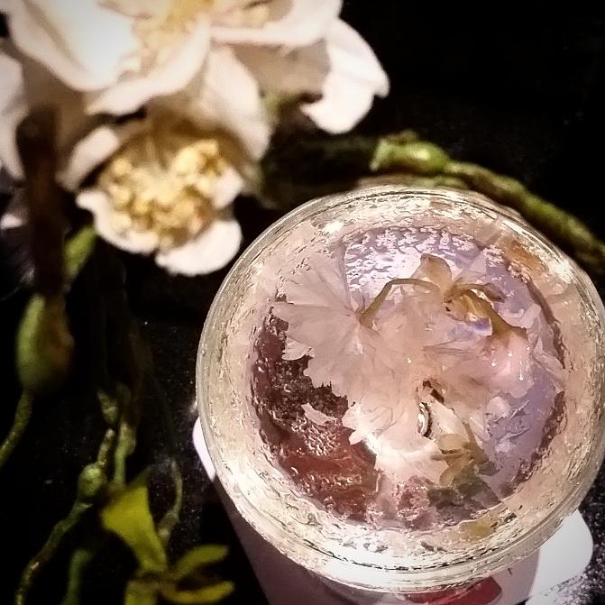 OakMonster.com - Fillets Bangkok - Sakura Martini