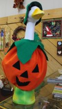 YES! A pumpkin Goose is just the thing! They have a witches costume too.