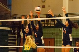 The Huskies' Alex Weisman (9), Athena Shelley-Diggs (7) and Chloe Gill (11) elevate at the net.   Courtesy Kelly Collins