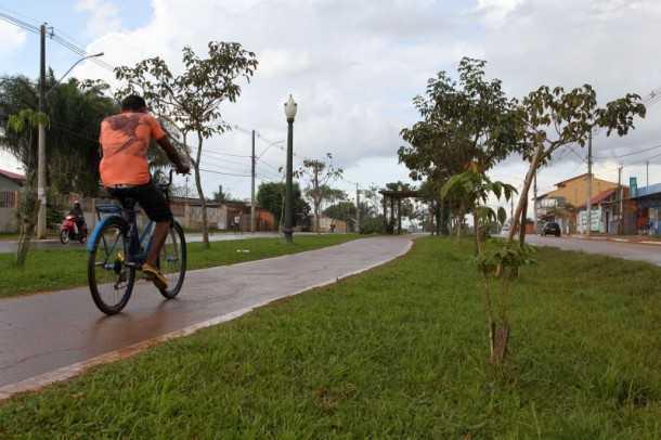 A meta é que até 2014 sejam arborizadas 100 quilômetros de ruas só na capital acreana (Foto: Angela Peres/Secom)