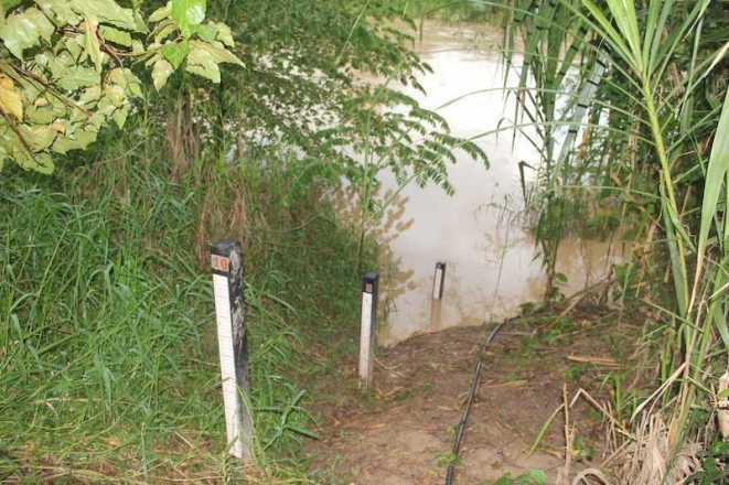 Réguas de medição localizada em Epitaciolândia registraram aumento do nível - Foto: Alexandre Lima
