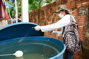 Casos de dengue diminuíram no Acre