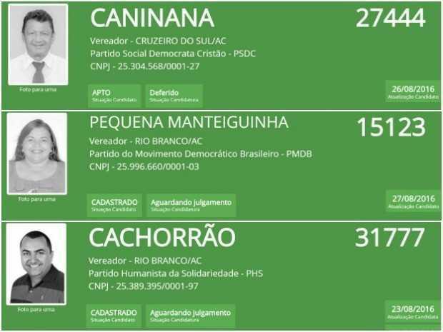 Caninana, Pequena Manteiguinha e Cachorrão disputam eleições 2016 no Acre (Foto: Arte/G1)