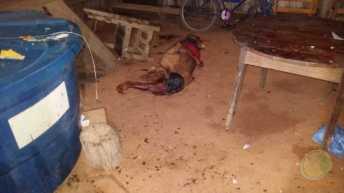 assassinato_francisco_-4